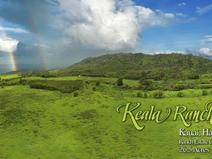 MLS#285214 — Kilauea Real Estate