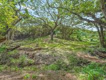 MLS#646515 — Kapaa Real Estate