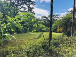 Kauai foreclosures